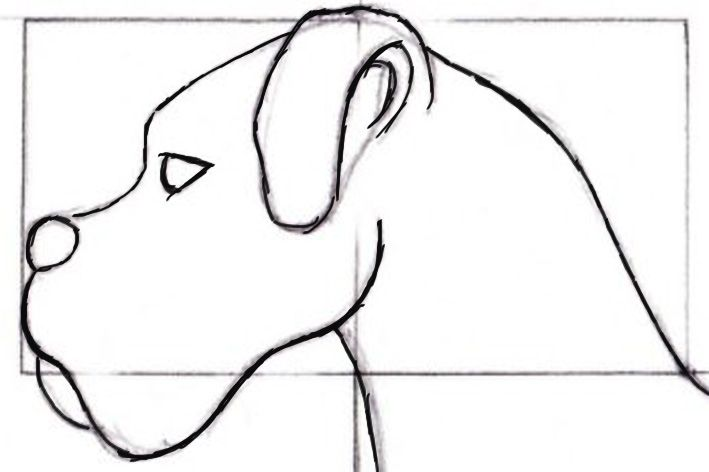 Desenhar animais não é uma tarefa muito fácil , mas também não é impossivel. Exige muito prática, dominio de luz e sombra, estuda...