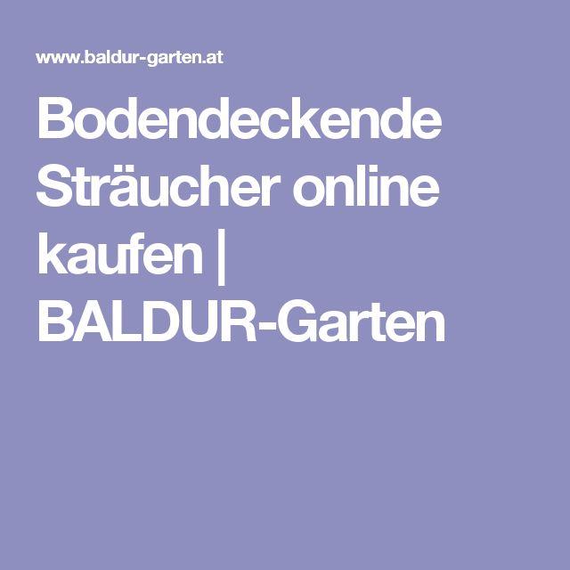 Bodendeckende Sträucher online kaufen   BALDUR-Garten