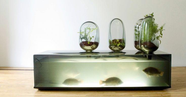 Designers criam objetos e até casas a partir de elementos vivos e biodegradáveis