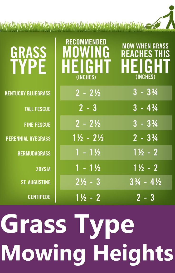 Lawn care advertising ideas - Mowing Is Key For An Attractive Lawn Check Out This Easy Guide To Ideal Lawn Mowing Heights