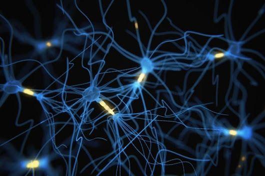 A Snapshot of Neural Activity  Full article at http://neurosciencenews.com/fl...