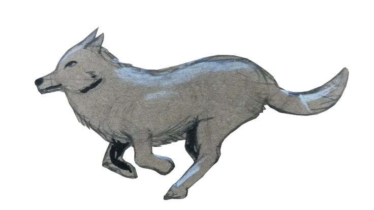 A gif of my running wolf!