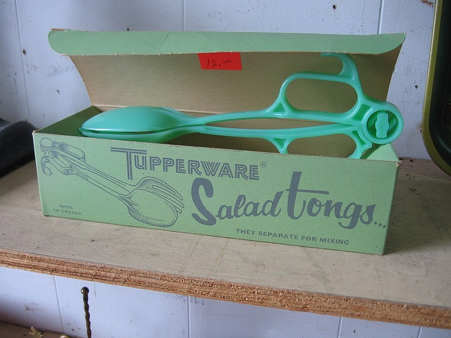 vintage Tupperware. oh the guilt! my poor mom broke her toe on the leg of the sofa while chasing me when i took off running with her new tupperware tongs. i was really little, (maybe 4), but i remember that clear as a bell.