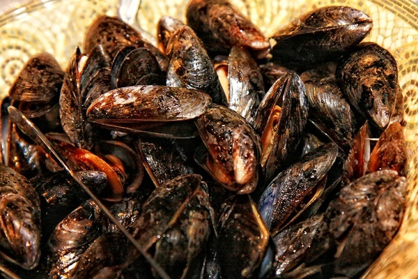 Mussels food-products: Mussels Foodproduct, Food Photography, Mussels Food Products