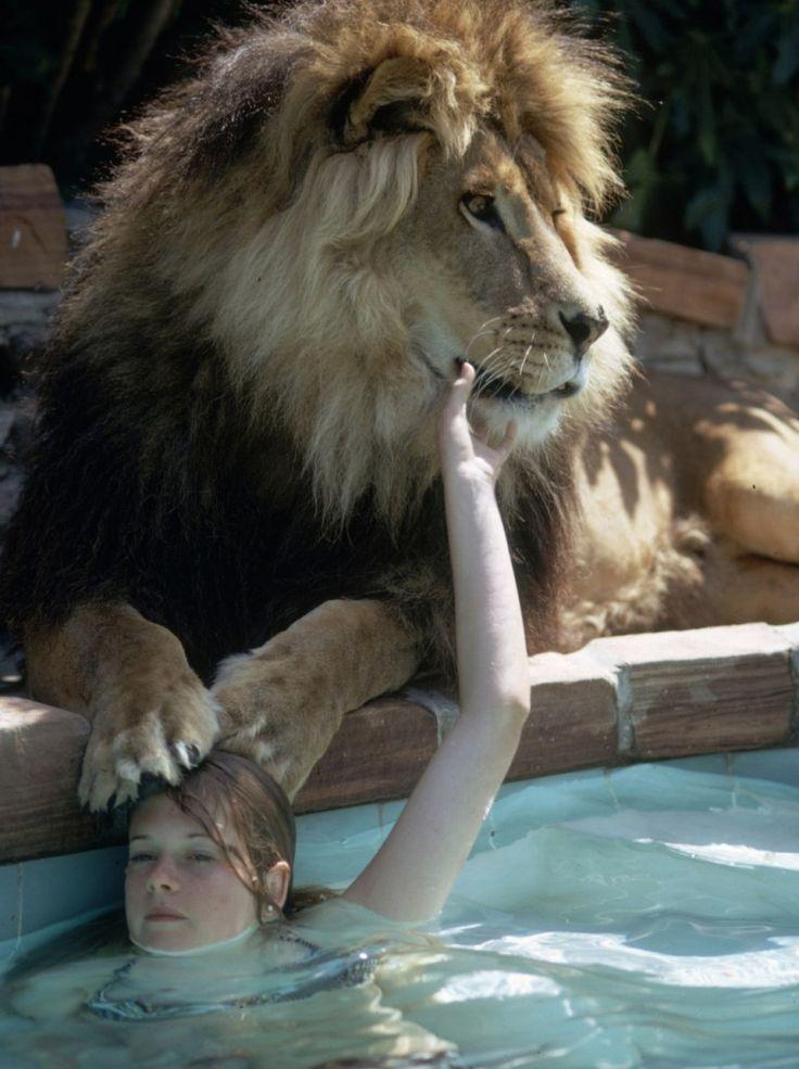 Melanie Griffith adolescente avec son lion animal de compagnie