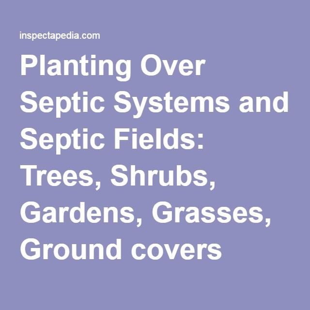 Planting Over Septic Systems and Septic Fields: Trees, Shrubs, Gardens, Grasses, Ground covers over the Septic Tank, Drainfield or Leachfield