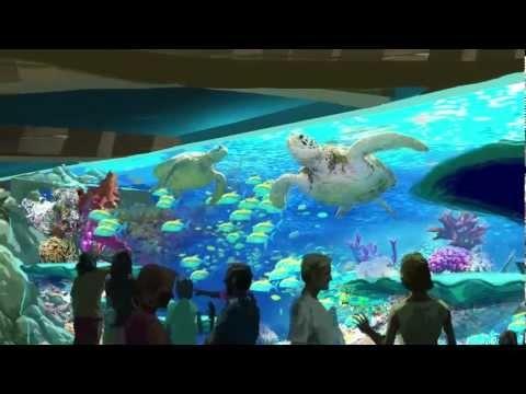 Overview of Turtle Trek. Coming to SeaWorld Orlando