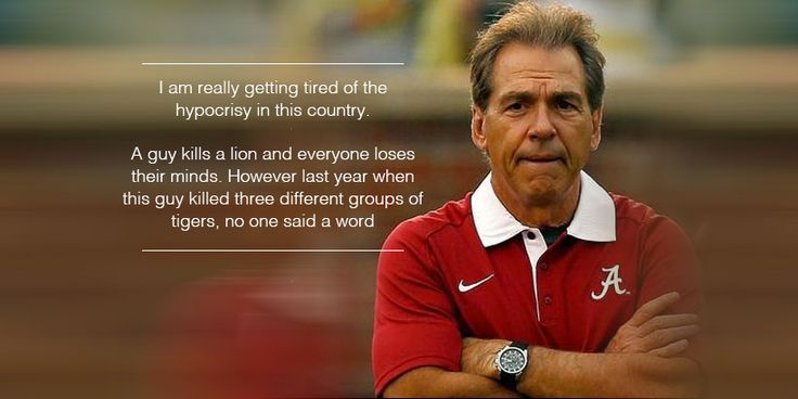 What does Alabama Football have to do with Cecil the Lion? Hilarious Saban meme takes the internet by storm - Yellowhammer News