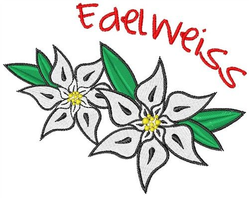Edelweiss Embroidery Design Embroidery Designs Machine