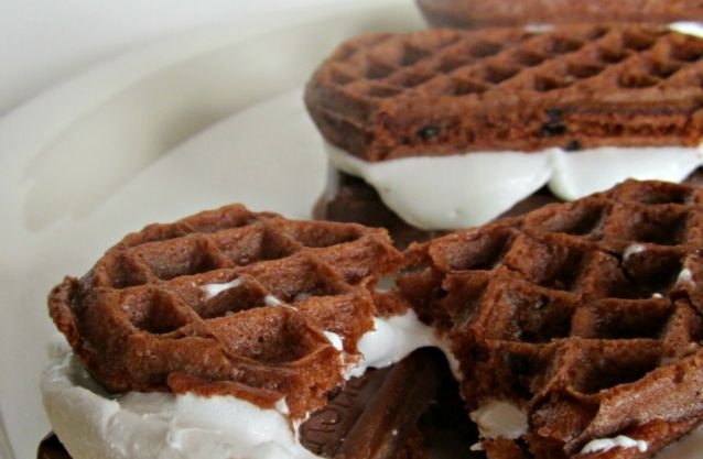 Double Chocolate Waffle S'Mores - Tip Junkie