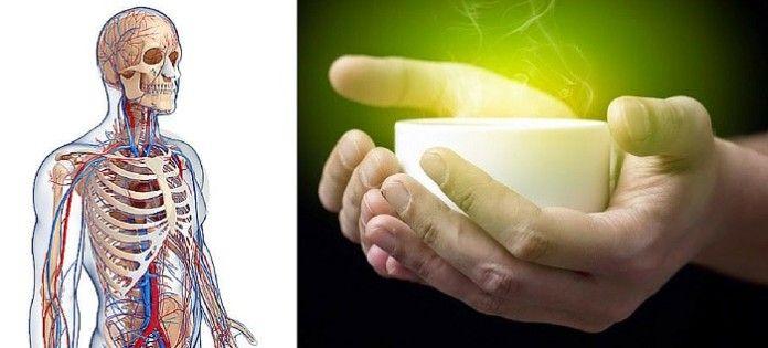 Ničí cholesterol a spaľuje tuk: Tento nápoj je silnejší než lieky a odporúčajú ho aj lekári - TOPMAGAZIN.sk