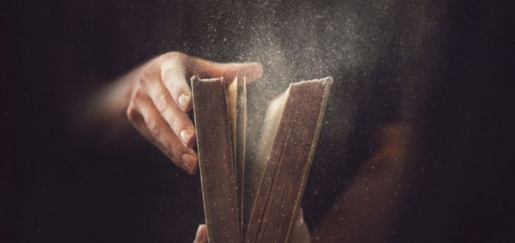 Libri - Il Libraio
