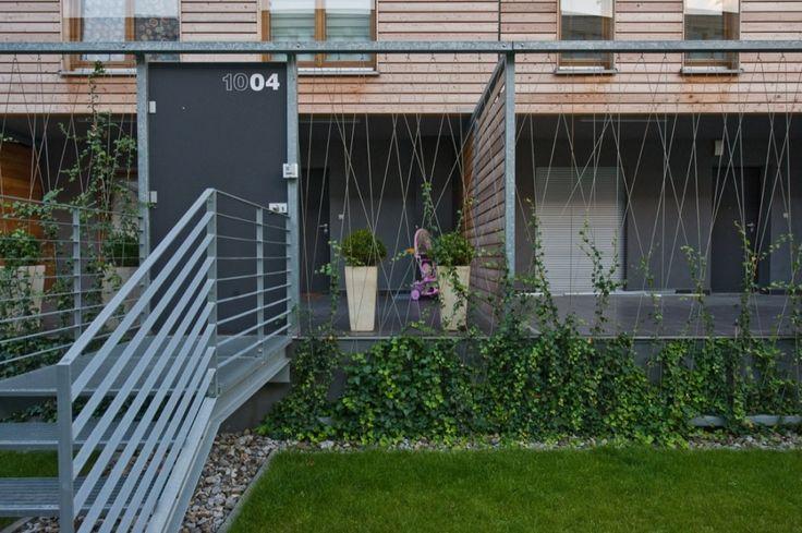 Housing Complex – medusagroup