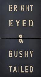 Bright Eyed & Bushy Tailed.