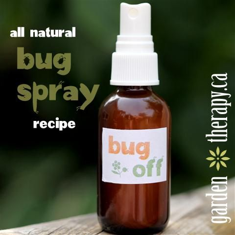 Recipe for natural bug  repellent spray - to keep mosquitoes from biting! non-toxic.