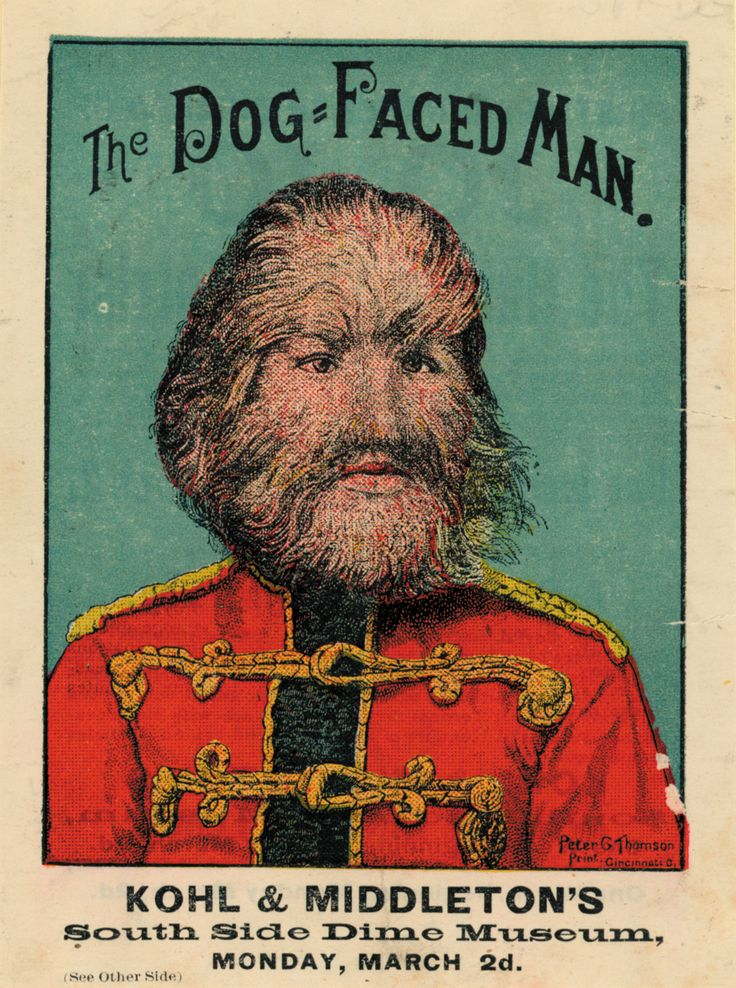 freak posters | Victorian Freak Show Posters - Kohl &^ Middletons - The Dog Faced Man