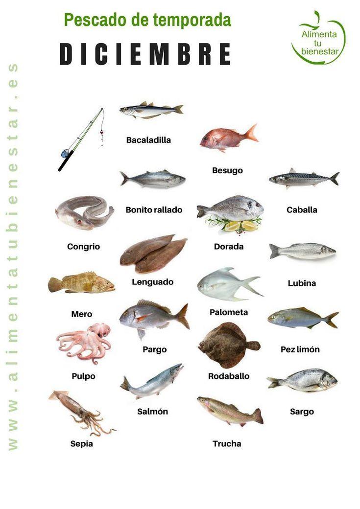 Pescado de temporada en diciembre
