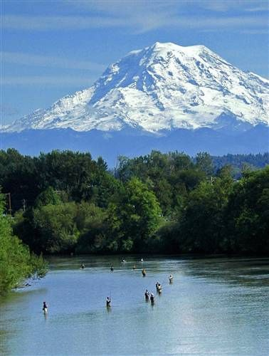 Puyallup River salmon fishing, Washington State - saw this every year on my commute to work!