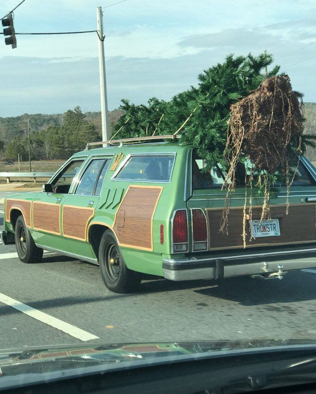 I found the Griswold family on Christmas Eve