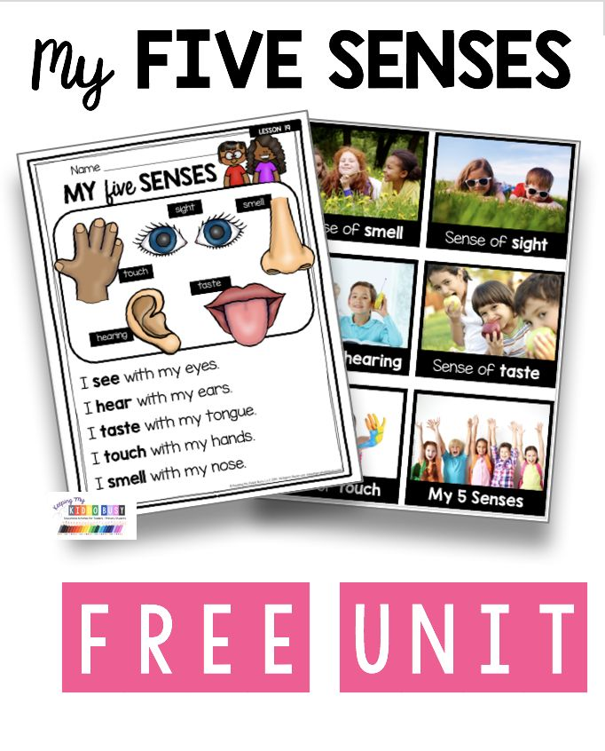 All About My Body and 5 Senses – FREE ACTIVITY – Science Unit 1