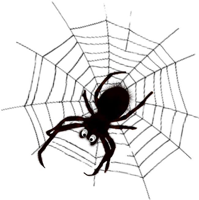 Гифы открытка, рисунок с пауками