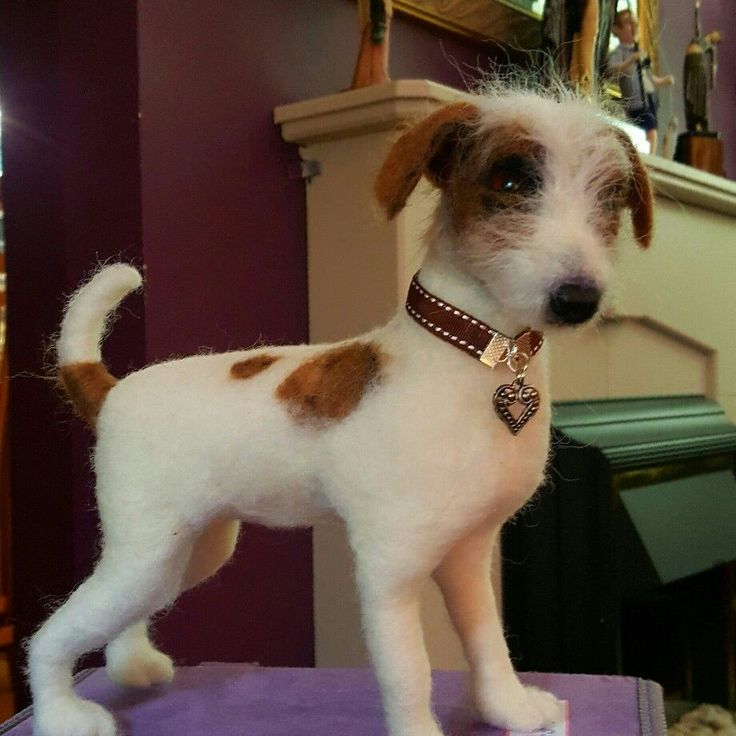 Needle felted Jack Russell by Eileen Williams of Littlecrafts Needle Felting