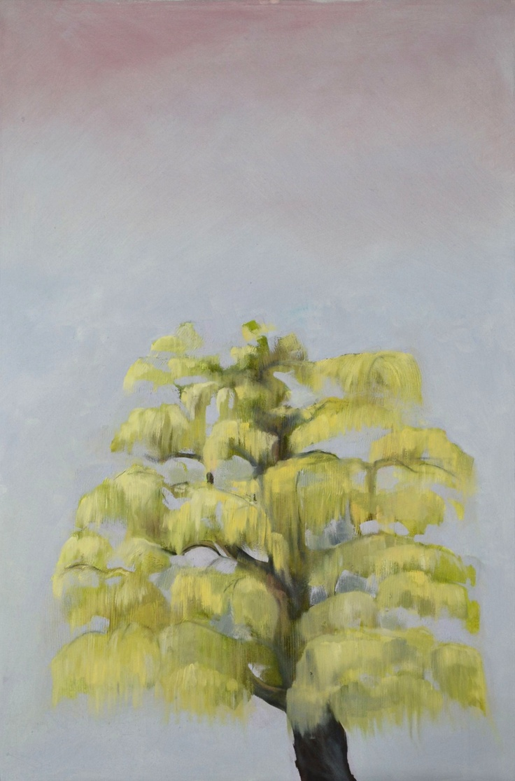 Spring Willow (the veterinary tree)  Charlie Miller 2013   Oil on canvas  60cm x 90cm