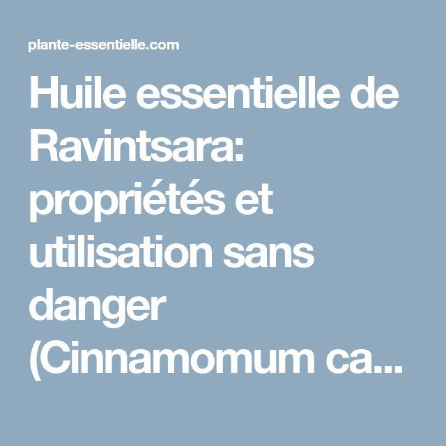 Huile essentielle de Ravintsara: propriétés et utilisation sans danger (Cinnamomum camphora ct eucalyptole))