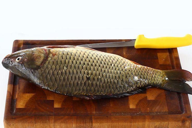 Cum se curăță, se eviscerează și se filetează un pește, crap, tutorial video. O metodă ingenioasă, rapidă și curată de a curăța crapul de solzi, fără a produce un...