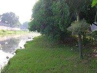 Merubah Wajah Sungai Pekalongan Lebih Produktif | Koran Online Pekalongan Dan Sekitarnya