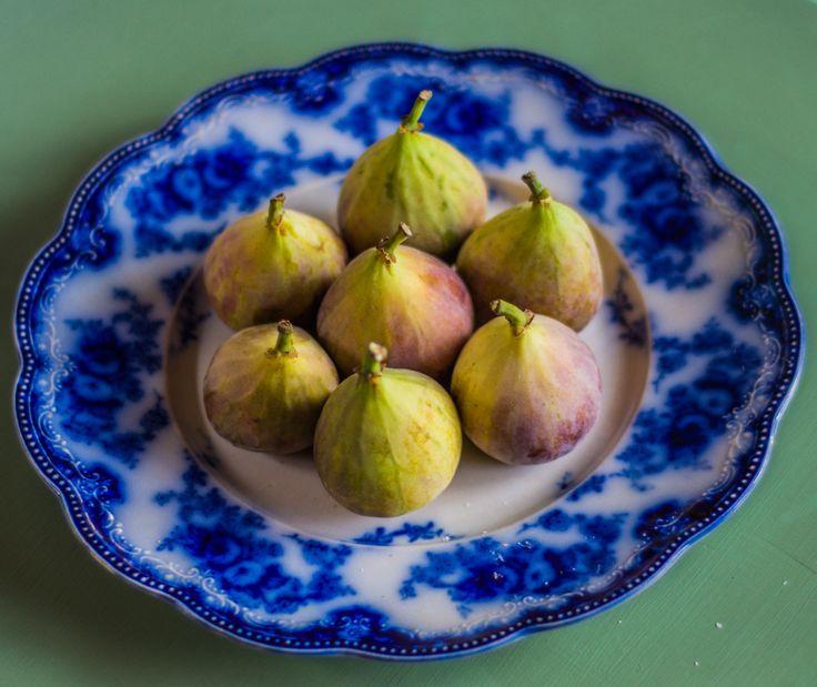 Figs in Blue