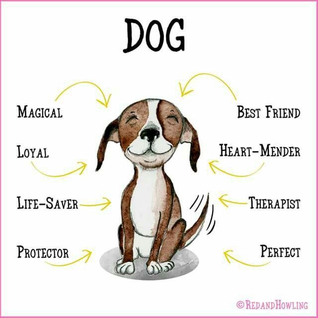 True... My Dog, My Best Friend!