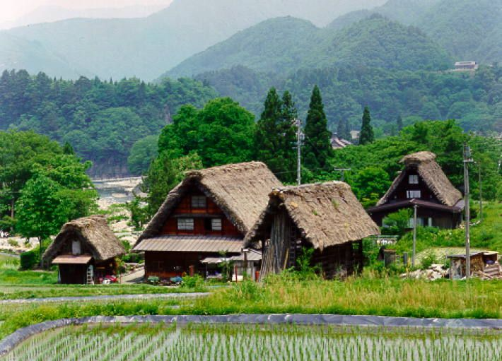 Historic Villages of Shirakawa-go and Gokayama Located in a mountainous region that was cut off from the rest of the world for a long period of time, these villages with their Gassho-style houses subsisted on the cultivation of mulberry trees and the rearing of silkworms.