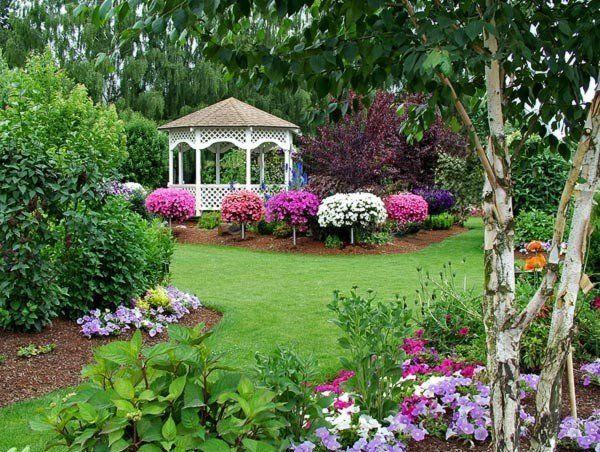 Хитрости и доступные советы начинающему садоводу...