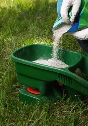 How to Fertilize Lawn in Fall. For more information, call us at 970-389-4784 or visit us at http://www.summit-county-services.com/landscaping--lawn-care.html