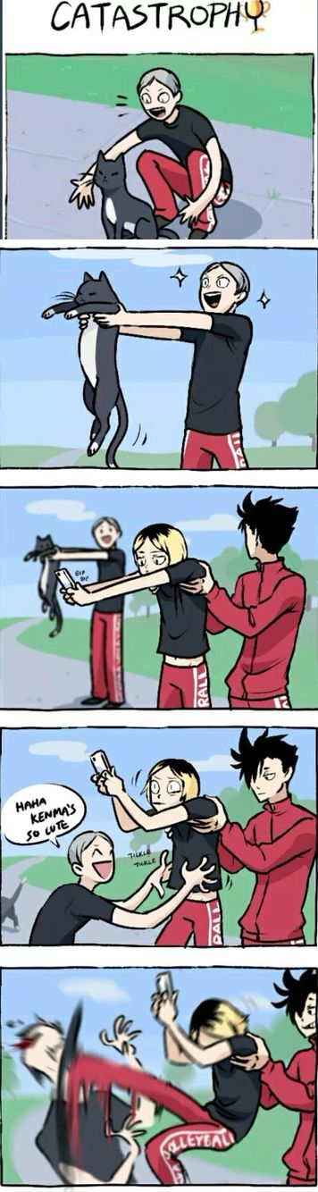 Kenma the cat    Lev you idiot, lol kuroo never gonna let Lev forget this xD