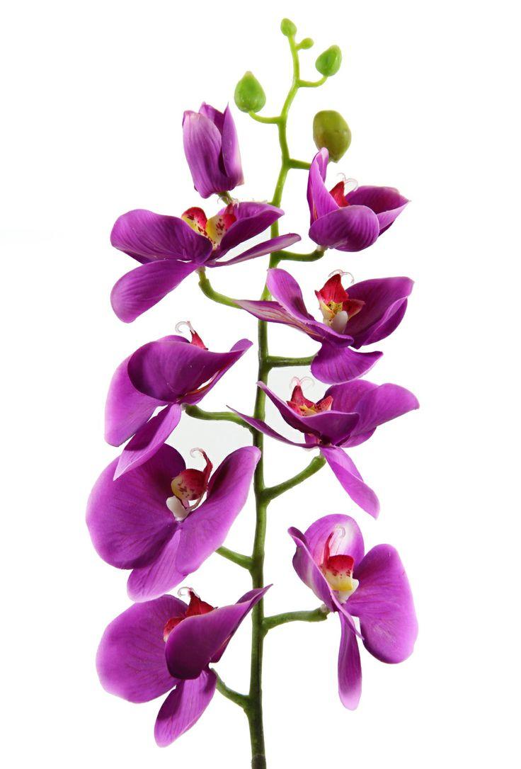 80 cm Gerçek Dokunuş Kelebek Orkide...  http://www.dekorsende.com/p-3516-dal-demet-Kelebek-Orkide-Mor-2122120221542-.html
