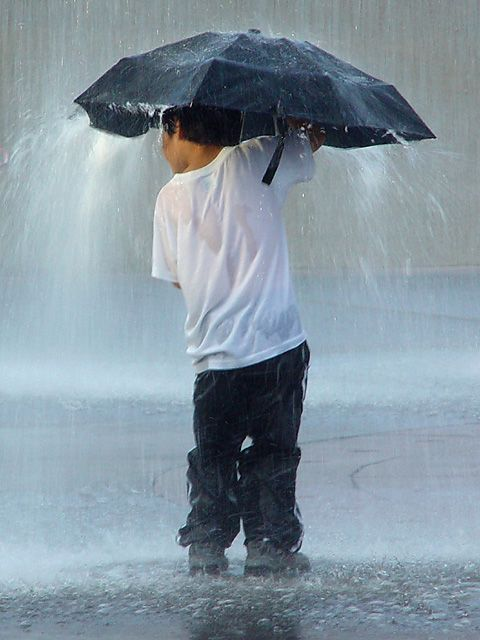 20+ Beautiful Collection Of Rain Photography