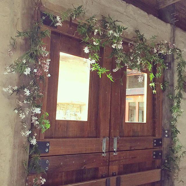 jasmine wedding garland