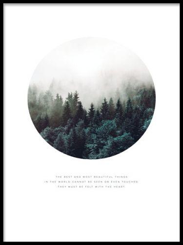 Poster med vacker skog