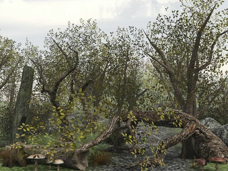source for We're Closed trees, rocks and mushrooms. http://www.dexsoft-games.com/models/brushwood.html