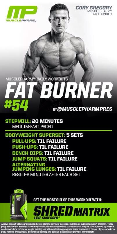 Egg fat burning food