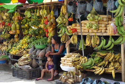 Lots of fruit @ Sierra Nevada de Santa Marta #colombia