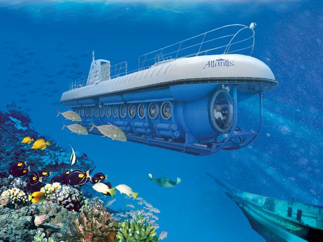 Atlantis Submarine, Barbados. You will witness shipwrecks, amazing sea life and coral formations ✯ ωнιмѕу ѕαη∂у