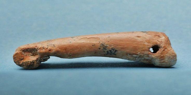 BİLİM DÜNYASI ///  Tarih Öncesi İnsanlar Ada Hayvanlarının Kemiklerinden Aksesuarlar Yapıyordu