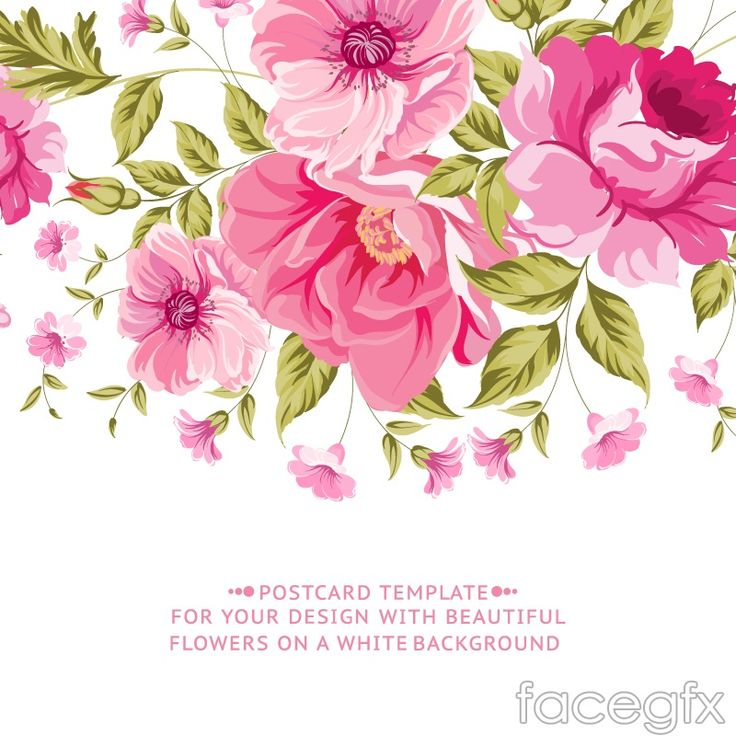 Vintage pink flower cards vector