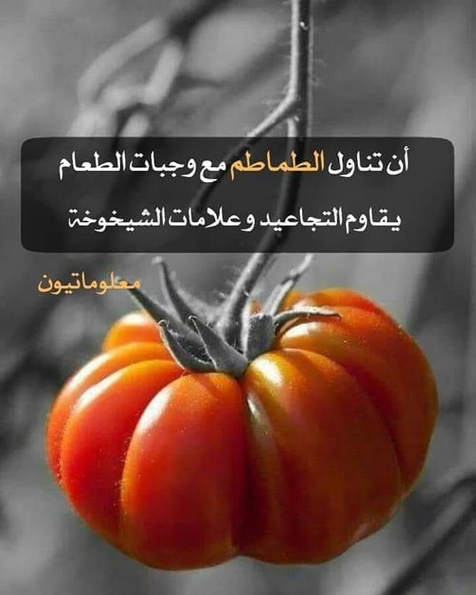 فوائد تناول الطماطم يوميا 1 مكافحة السرطانات 2 مفيدة لمرضى السكري 3 تعزيز صحة جهاز الدوران 4 خسارة الوزن 5 مكافحة Vegetables Food Tomato