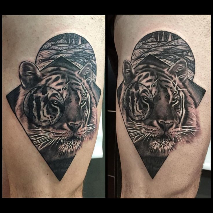 Beautiful Tiger Tattoo Design On Thigh: 2747 Best Inkspiration Images On Pinterest