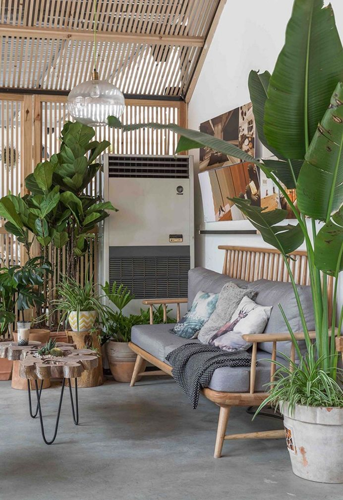 Tropical Forest Is Hanoi S Latest Greenery Filled Cafe Tropical
