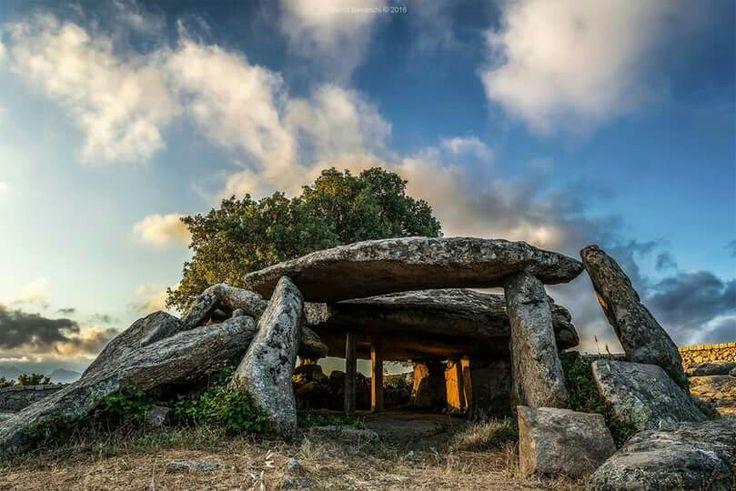 Dolmen Ladas - LURAS  #Sardinia #Cerdeña #Sardegna